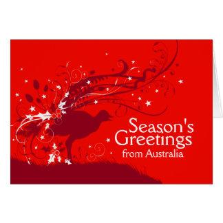 Graphic lyrebird red Australian Christmas card