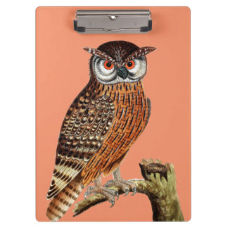 Graphic Owl Clipboard