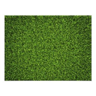 Grass Background Photo Art