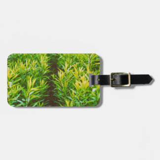 grass bag tag
