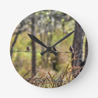 GRASS BIRD IN RURAL QUEENSLAND AUSTRALIA WALLCLOCKS