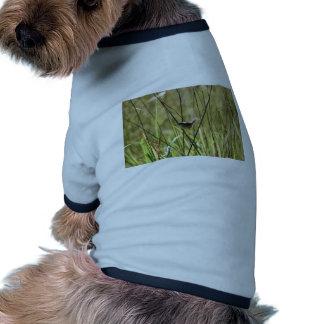 GRASS BIRD RURAL QUEENSLAND AUSTRALIA RINGER DOG SHIRT