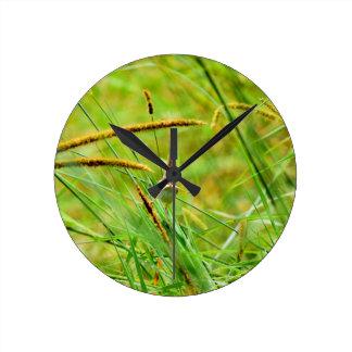 GRASS BIRD RURAL QUEENSLAND AUSTRALIA WALL CLOCKS