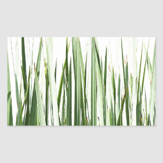 Grass Blades Nature Abstract Shapes Fashion style Rectangle Sticker