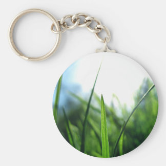 grass & blue sky basic round button key ring