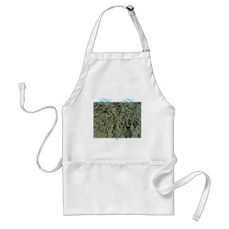 Grass growing on dry soil aprons