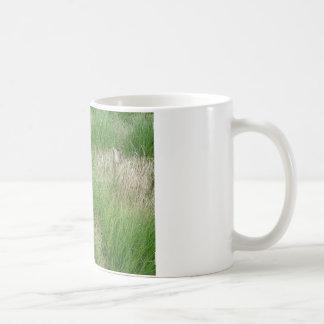 Grass Coffee Mug