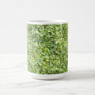 Grass Mugs