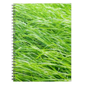 Grass Notebook