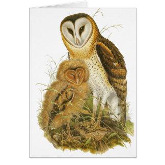 Grass Owl Card