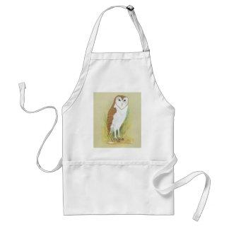 Grass Owl - Tyto longimembris Adult Apron