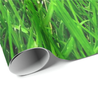 grass pattern, WRAP PAPER ,