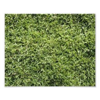 Grass Texture Photo Art