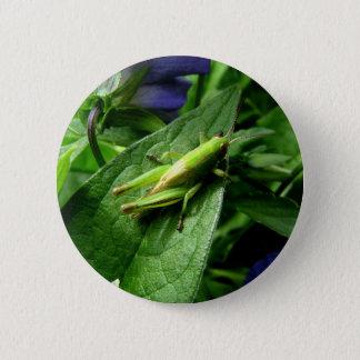 Grasshopper 6 Cm Round Badge
