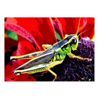 Grasshopper ATC Pack Of Chubby Business Cards