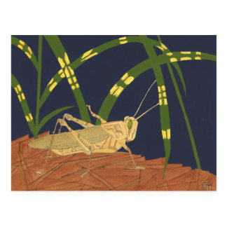 Grasshopper in Green Grass on Blue Background Post Cards