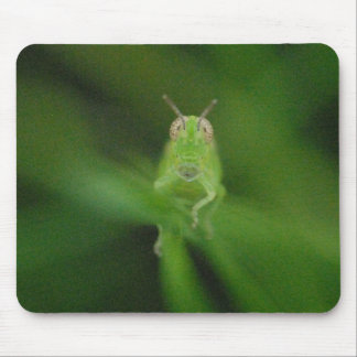 Grasshopper Mousepad