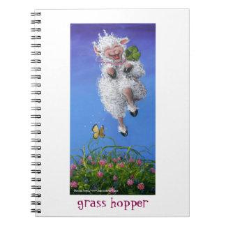 Grasshopper Notebooks