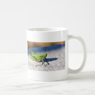 Grasshopper on fence post coffee mugs