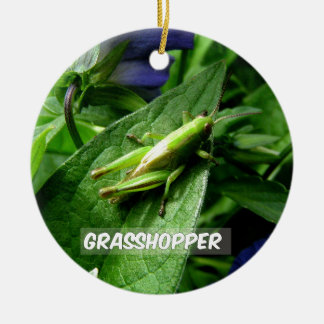 Grasshopper on leaf ceramic ornament