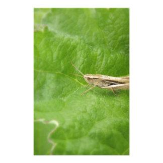 Grasshopper Stationery Design