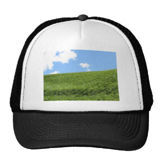 Grassy field at the rolling hill against the sky cap