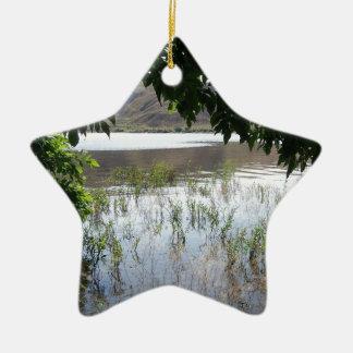 Grassy Lake with Tree Branch Ceramic Ornament