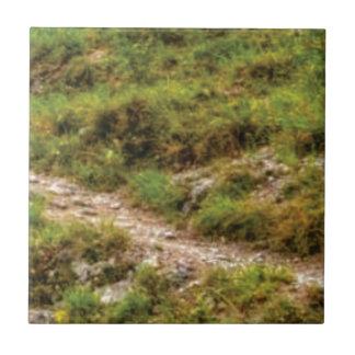 grassy path ceramic tile