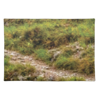 grassy path placemat