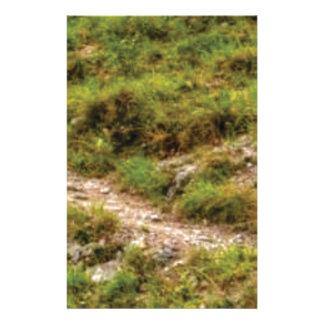 grassy path stationery