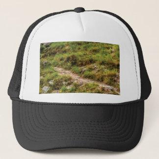 grassy path trucker hat
