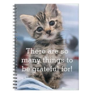 Grateful Kitten Journal