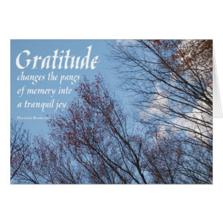 Gratitude Bonhoeffer Quote sobercards.com Card