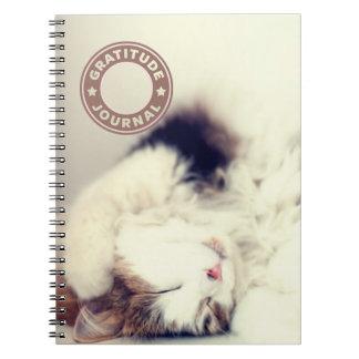 Gratitude journal sleeping cat