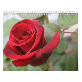 Gratitude Rose Lovers Calendar