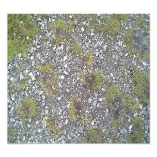 Gravel and grass photo art