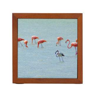 Gray and pink flamingos flock in lake desk organiser