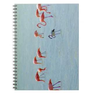 Gray and pink flamingos flock in lake notebooks