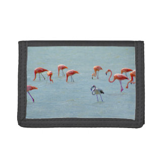Gray and pink flamingos flock in lake trifold wallet
