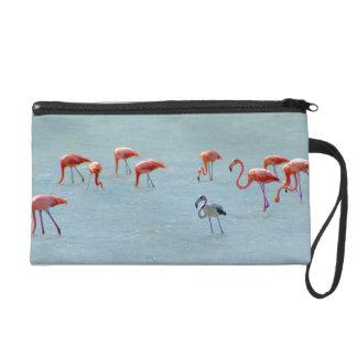 Gray and pink flamingos flock in lake wristlet