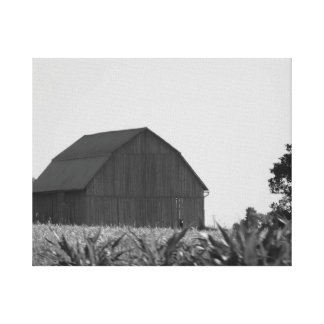 Gray and White Farm Land and Barn Canvas Print