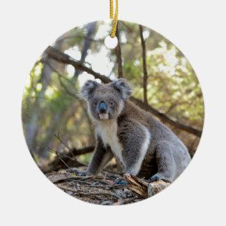 Gray and White Koala Bear Ceramic Ornament