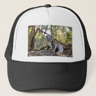 Gray and White Koala Bear Trucker Hat