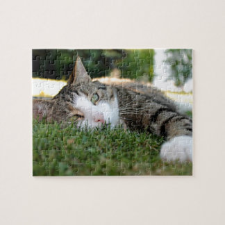 Gray and White Tiger Cat Daydreams on Grass Puzzle