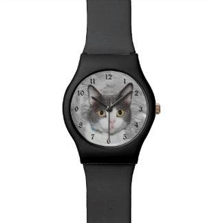 Gray and white tuxedo kitty watch