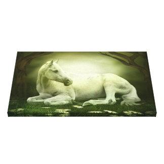 Gray Arabian Horse Canvas Print