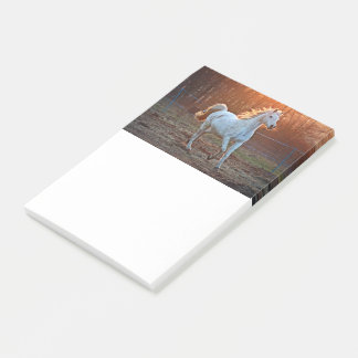 Gray Arabian Horse Post-it Notes