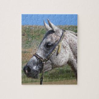 Gray Beduoin Arabian Mare Jigsaw Puzzle