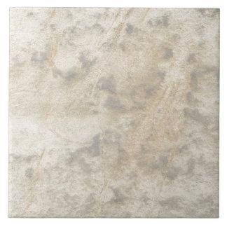 Gray Beige Marbleized Tile