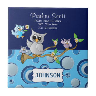 Gray & Blue Baby Owl   Birth Information Tile